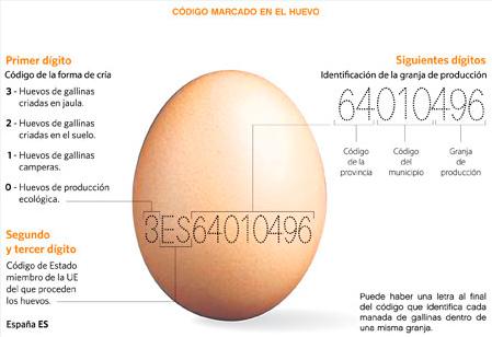 clasificacion huevos